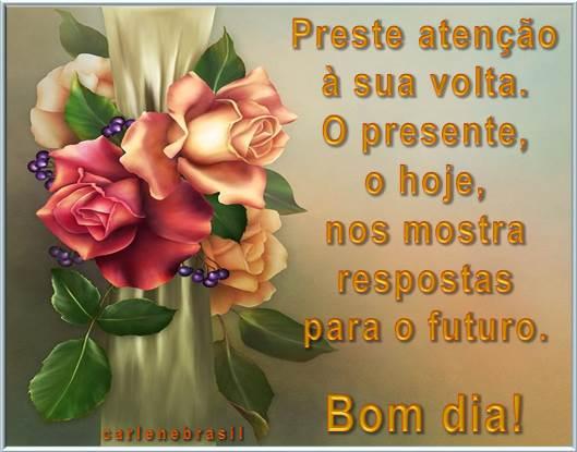 Bom Dia Meu Anjo: Carlenebrasil Pra Você