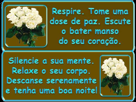 Mensagem Boa Noite Carlenebrasil Pra Você